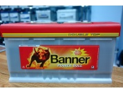 BANNER PROFESSIONAL 100AH 800A